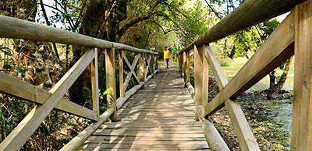 Parque de la Salud de Cartago permanece en el abandono