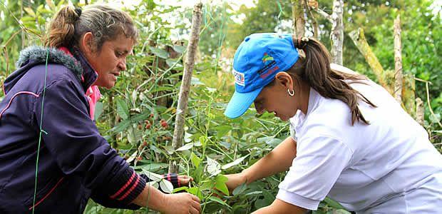 7823 personas en Risaralda consumen alimentos nutritivos gracias a la Gobernación