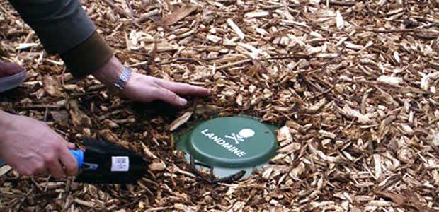 Mañana viernes jornada de educación en el riesgo de minas antipersonal