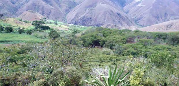 El Valle cuenta con la primera área protegida para conservación de suelos