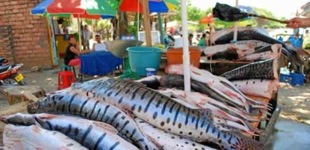 Minagricultura anunció total respaldo al proyecto pesquero propuesto en el Valle