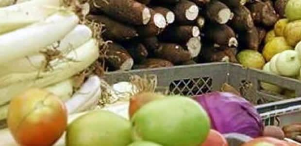 Plan hortifrutícola del Valle es ejemplo para Colombia: Minagricultura