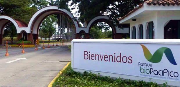 Universidad estado empresa del Valle visualiza oportunidades empresariales