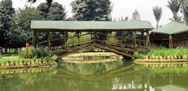 Inciva celebra los 46 años del Jardín Botánico Juan María Céspedes
