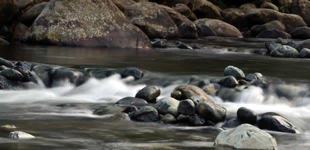 Gobierno del Valle solicitó a la CVC declarar como Área Protegida al Eco Parque Río Pance