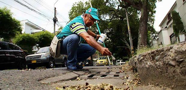Dengue disminuyó 66% en Cali, serán intensificadas las jornadas de fumigación