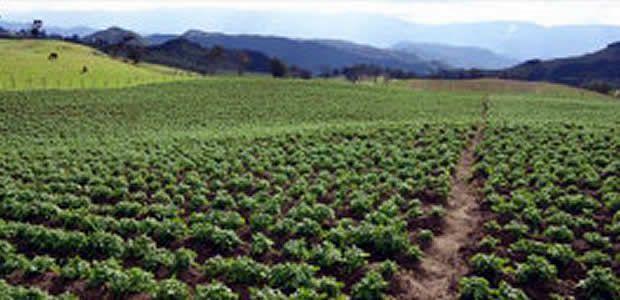 En el Valle se entregarán 1.088 predios gracias a proyecto de legalización de tierras