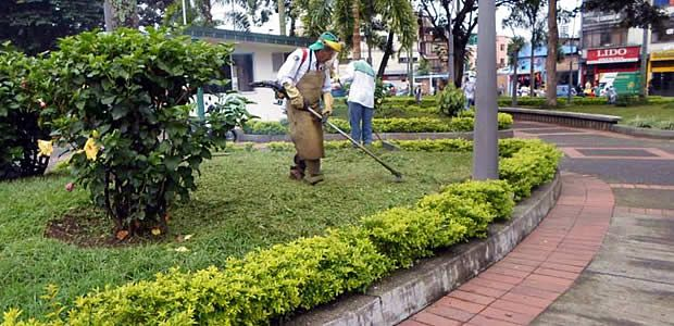 Avanza mantenimiento de zonas verdes en Pereira