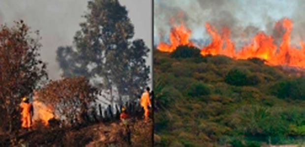 Incidentes por incendios forestales y convida al buen manejo del ecosistema