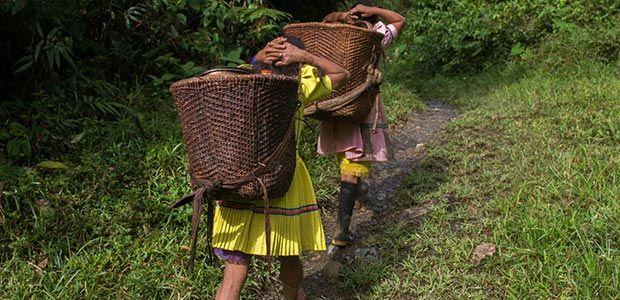 Mutilación genital femenina persiste en indígenas del país dice ONU