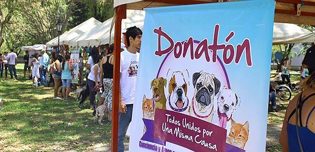 Donatón pro-mascotas en Cartago el domingo 15 de mayo en el parque lineal