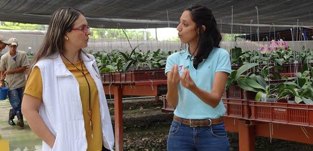 Asocolflores y Alcaldía de Pereira impulsan sector floricultor