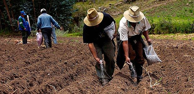 En el Quindío se protocolizará convenio para aumentar la productividad del sector agropecuario