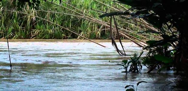 Tras lluvias de este viernes, gobierno de Cartago está atento a comportamiento del río de La Vieja