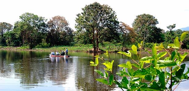 Gobernadora propone a laguna de Sonso como sitio turístico para avistamiento de aves