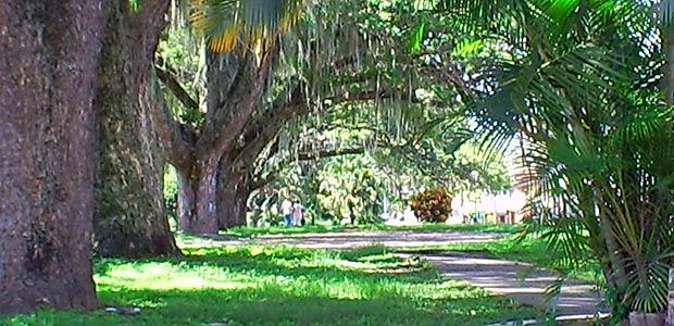 Suspenden recuperación del parque La Isleta de Cartago