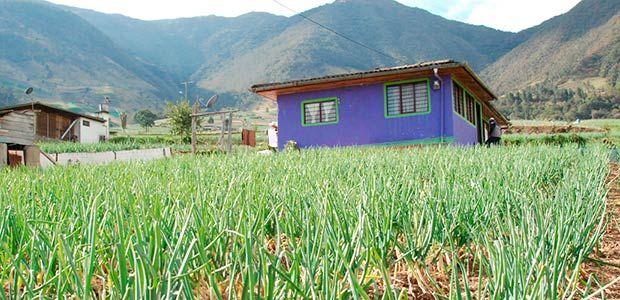 Gobierno reforzará seguridad al sector productivo del centro del Valle