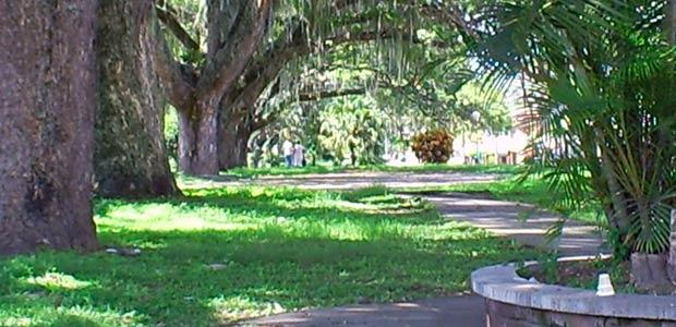 Intervendrán el parque Lineal de Cartago