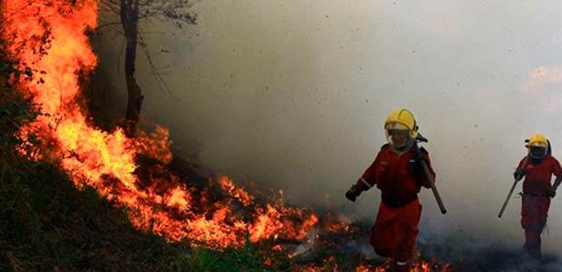 Más de 180 incendios forestales se han registrado en esta temporada en el Valle del Cauca
