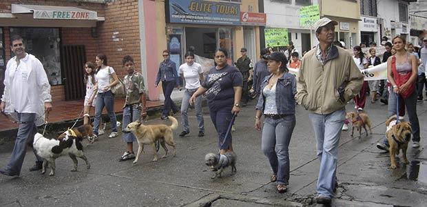 Institucionalizan día en Cartago para las mascotas y las ponen a marchar en celebración