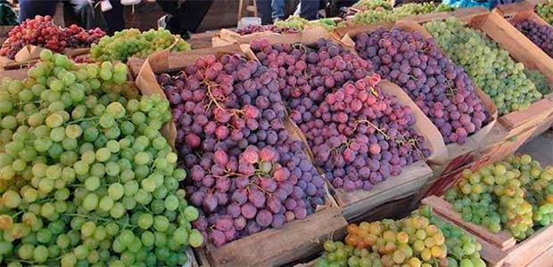 Programa integral de fruticultura arrancó con caracterización en municipios productores del Valle