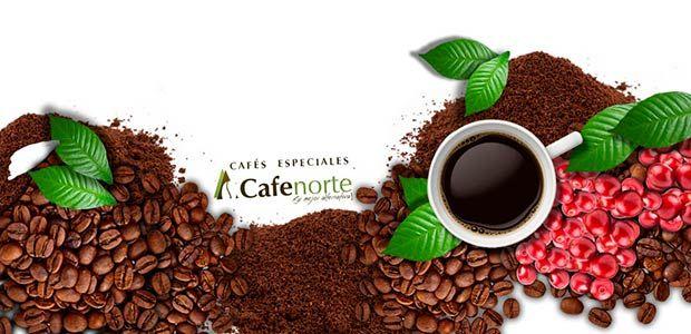 Cafenorte: modelo cooperativo de exportación