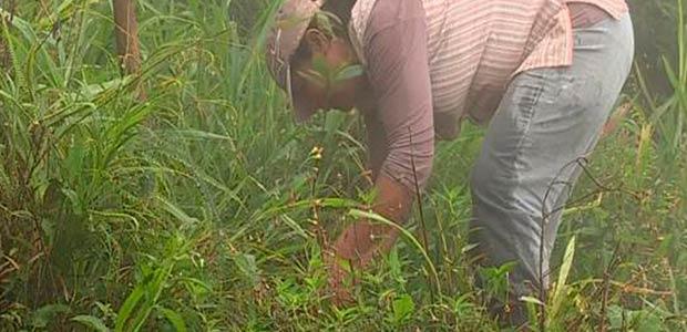 Más de 3000 niños se beneficiarán con proyecto de educación ambiental en el Valle