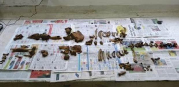 Hallazgo arqueológico de restos humanos en corregimiento de Matapalo, en Palmira