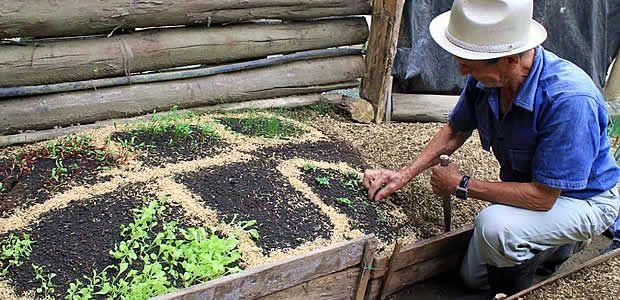 Más de 1500 familias vallecaucanas se han beneficiado del proyecto de seguridad alimentaria