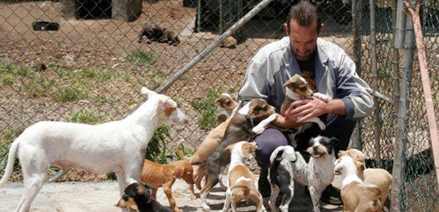 Se gestiona espacio para la construcción de un Centro de Bienestar Animal en Cartago