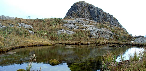 Parque Nacional Natural Farallones de Cali cumple 50 años