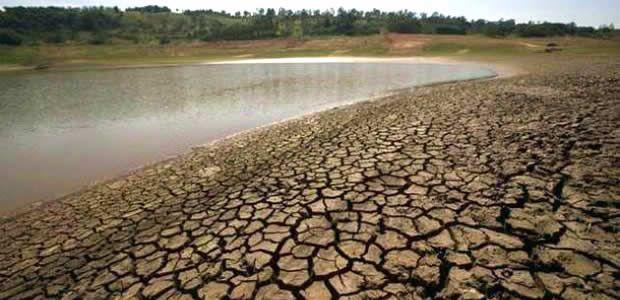 Calamidad pública en 46 municipios por sequía