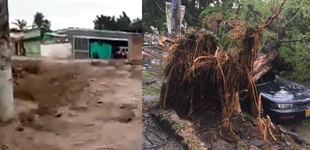 Inundaciones y caída de árboles en Cali; desbordamientos en Roldanillo
