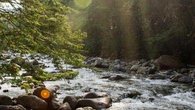 Propietarios de predios de Pance y Jamundí recibirán incentivos por cuidar las cuencas