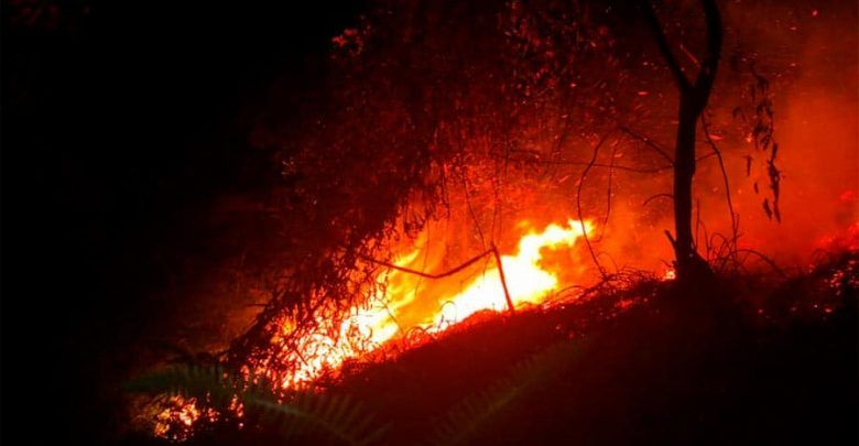 Incendio consumió 112 hectáreas en Yumbo, Valle