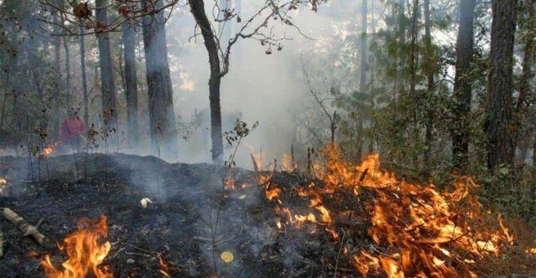 Ya son once incendios forestales en el Valle del Cauca este mes