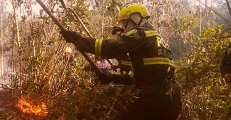 Alerta en el Valle; 58 incendios forestales en 21 municipios