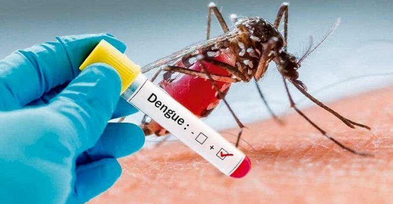 UESVALLE hace control para eliminación de criaderos del zancudo transmisor del Dengue en 40 municipios