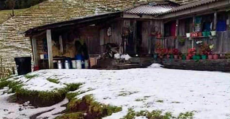 Fuerte vendaval afectó a 88 familias en Pereira