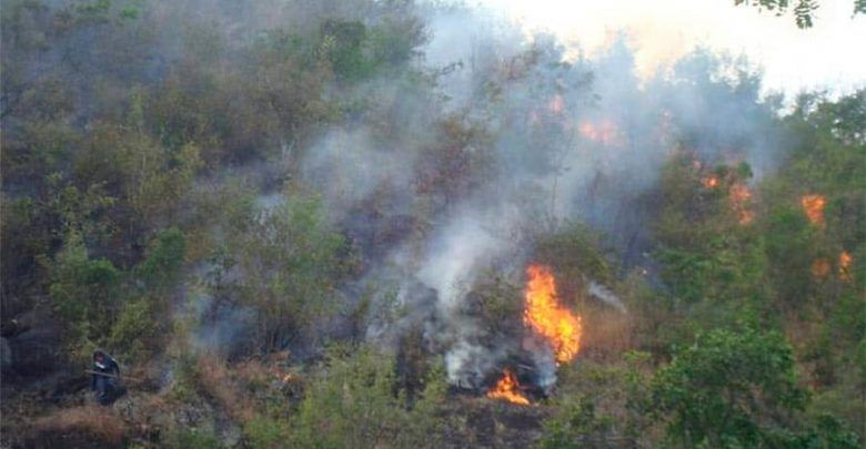 Doce incendios forestales se registraron el fin de semana en Pereira y Dosquebradas