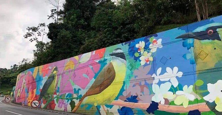 El mural de aves más grande del país está en Risaralda