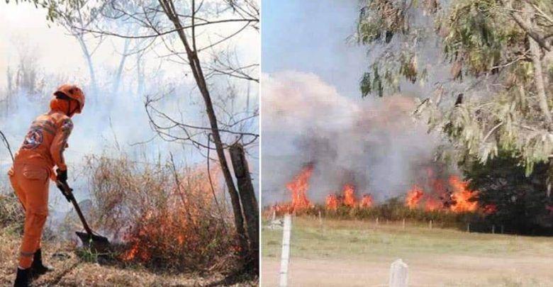Grave incendio forestal en Cartago fue controlado