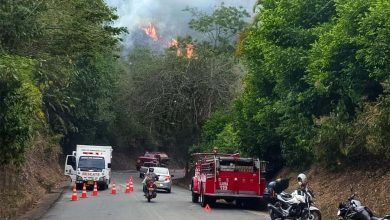 Photo of Incendio forestal en la vía Cartago – Alcalá
