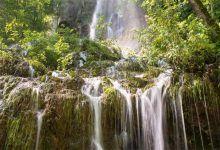 Photo of Cartago celebra la creación de una Fuerza de Tarea de Protección Ambiental