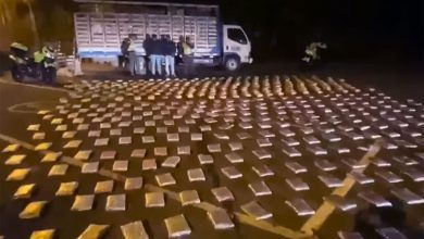 Llevaban más de 400 kilos de marihuana por la vía Cartago – Pereira