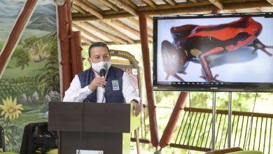 CARDER demandó por otorgamiento de licencia para cacería de fauna silvestre