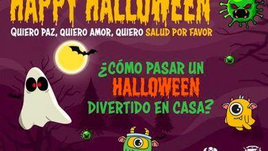 Recomiendan a alcaldes del Valle adoptar medidas para la celebración de Halloween