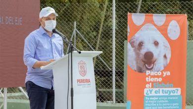 Dan apertura a programa de Sisbén para perros y gatos en Pereira