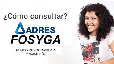 ¿Qué es el certificado Fosyga y cómo consultarlo?