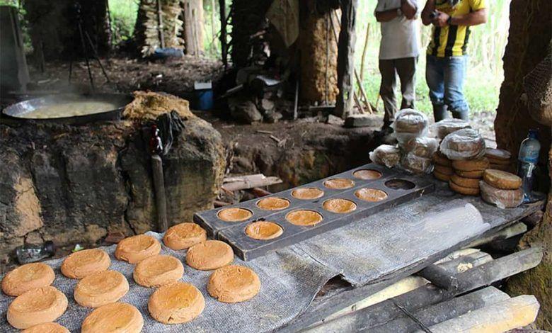 Asociaciones productoras de panela del Valle del Cauca reciben más de $1.200 millones